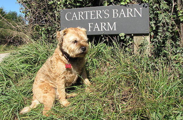 Carters Barn Farm, Piddlehinton, Dorset